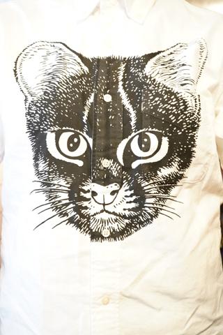 イリオモテヤマネコシャツ